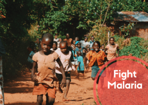 fight malaria project