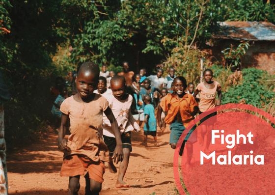 fight malaria project