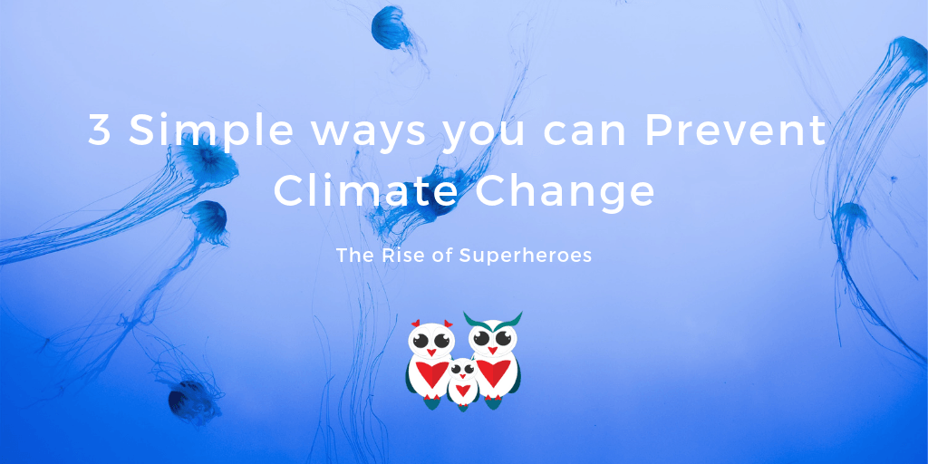 3 Simple ways you can Prevent Climate Change