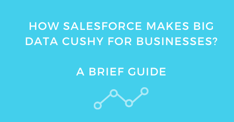 How Salesforce Makes Big Data Cushy for Businesses? A Brief Guide