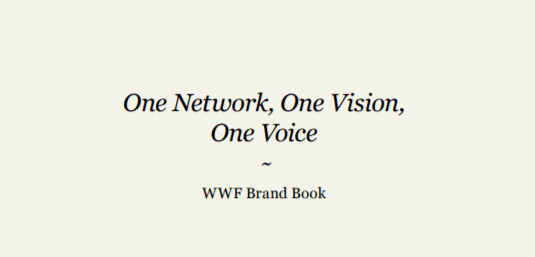 Nonprofit brand book example - charity water